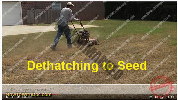 over seeding bermuda lawn