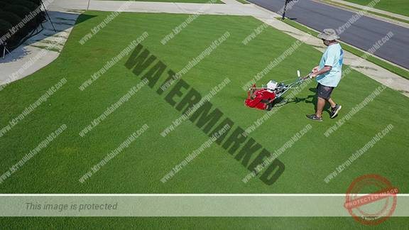 Best reel mower bermuda grass