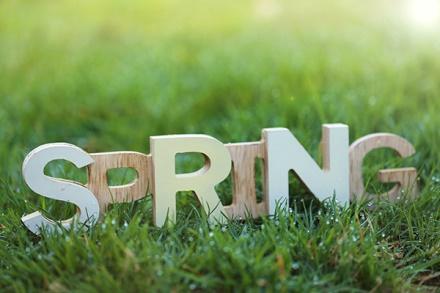 Spring bermuda lawn