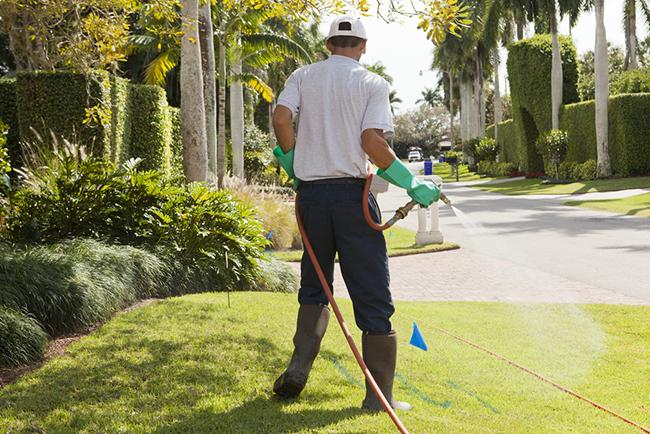 lawn service cost