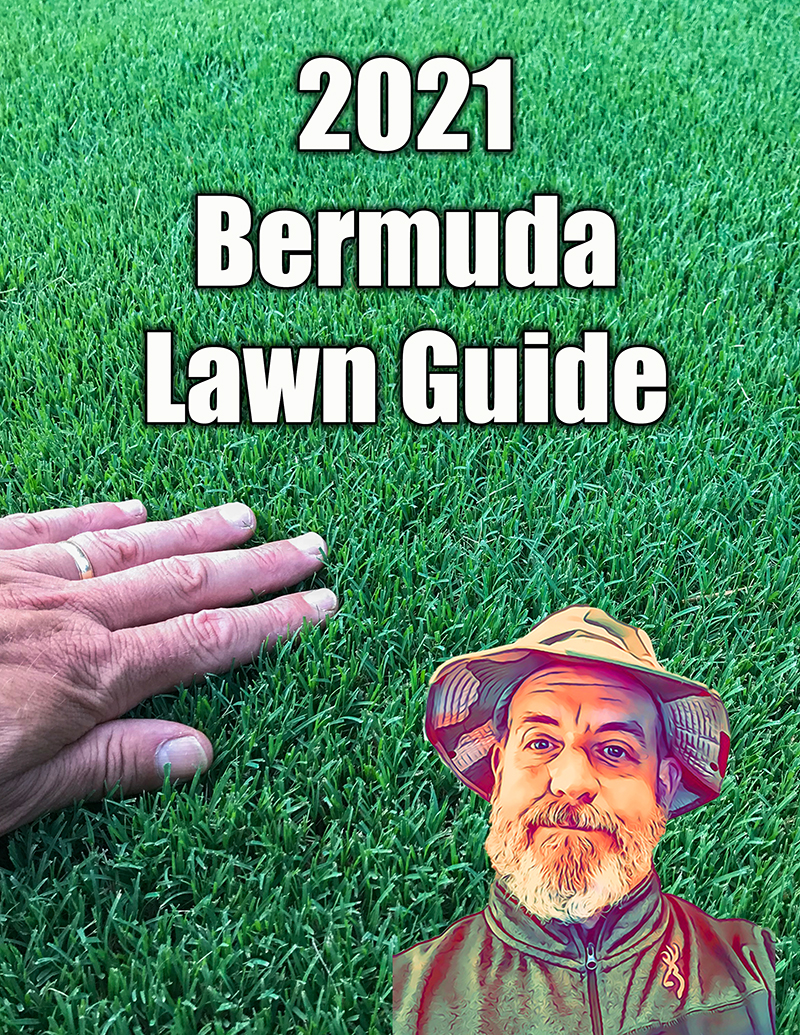 bermuda lawn guide 2021